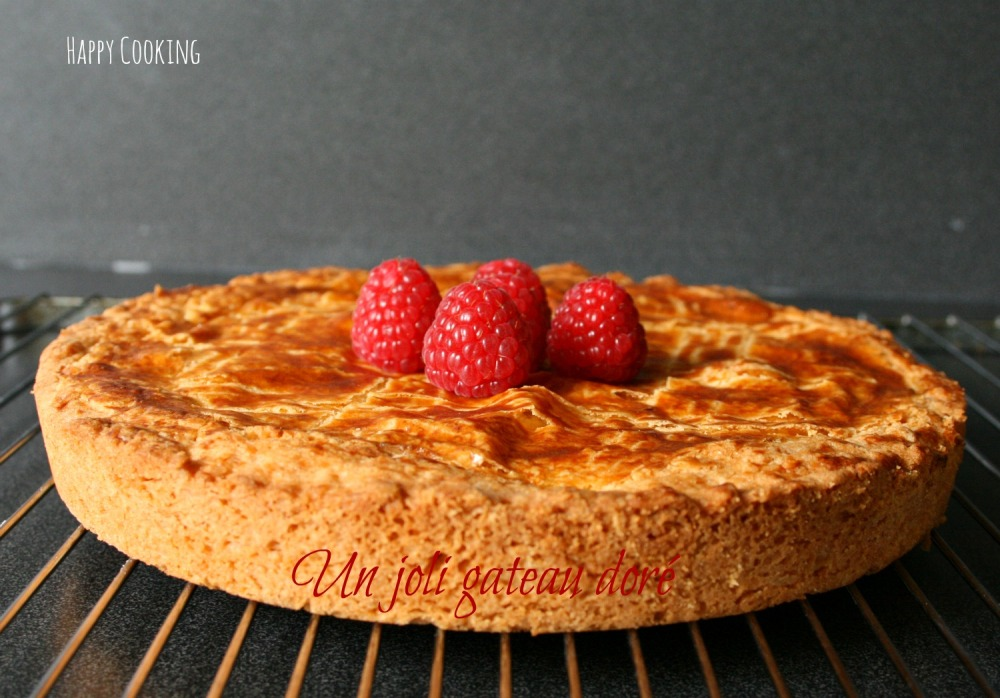 gateau basque framboise