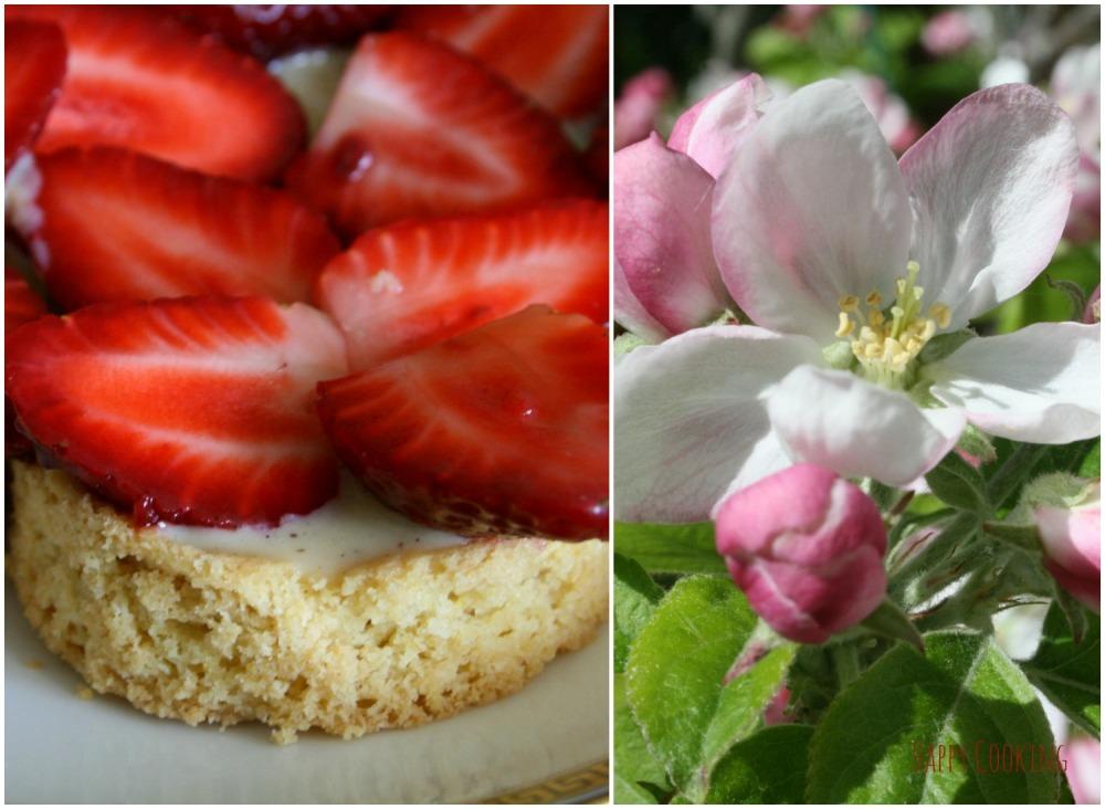 tarte aux fraises_crème brourdaloue