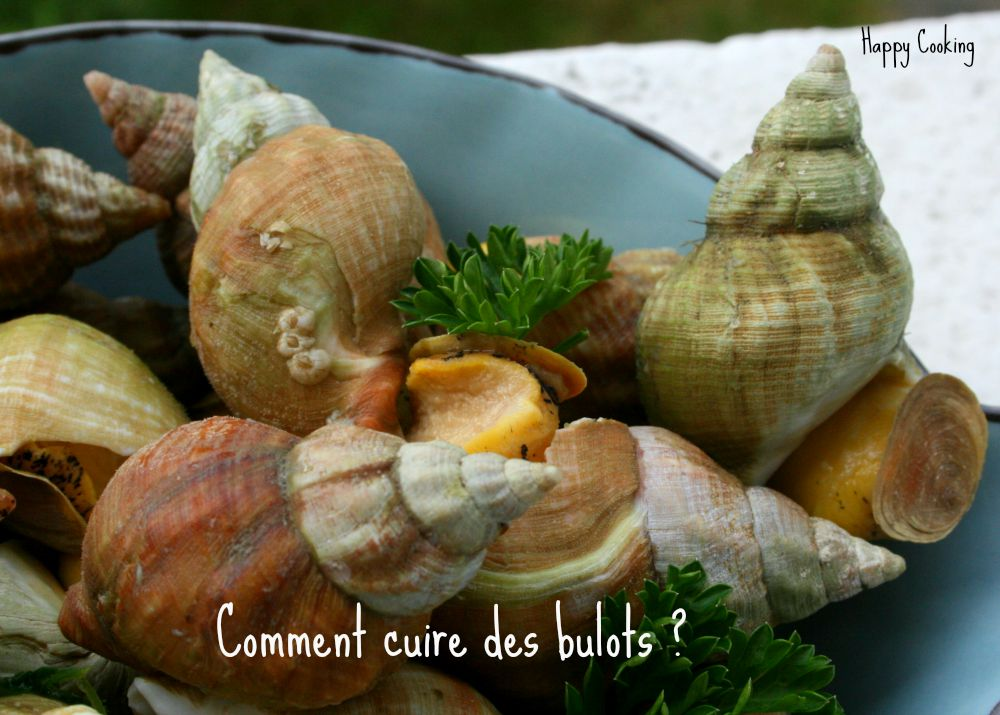 comment cuire des bulots  u2013 happy cooking